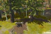Pine: L'évolution selon Twirlbound