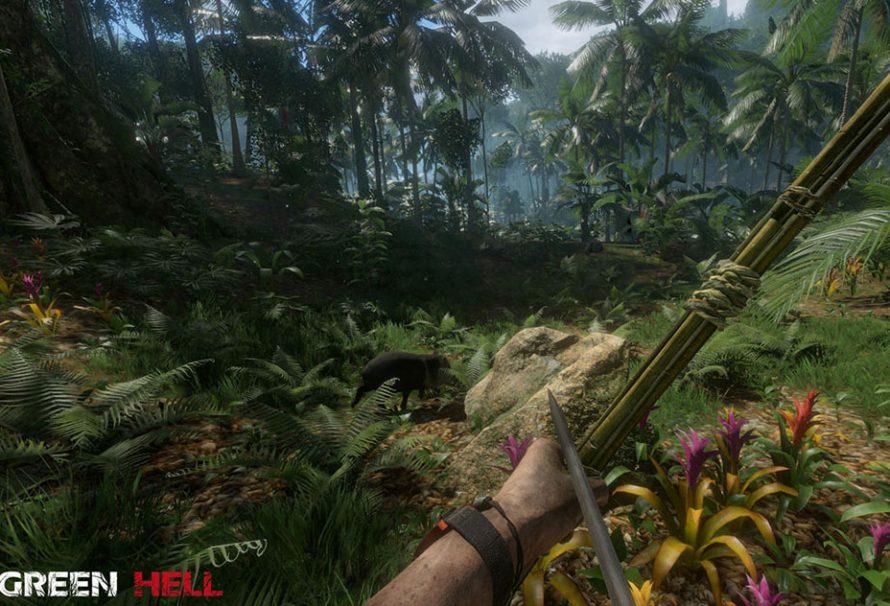 Green Hell : La survie n'a jamais été aussi ambitieuse