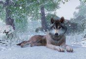Planet Zoo : Frontier annonce son prochain titre et c'est toujours de la gestion